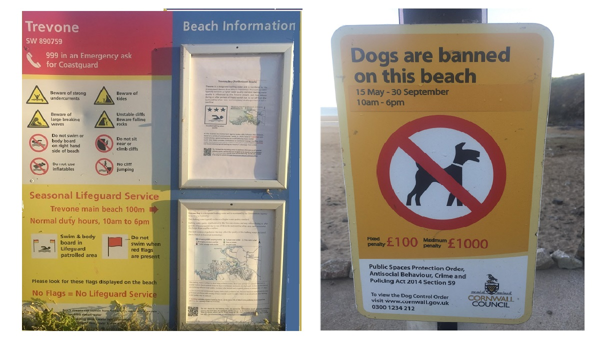 trevone-bay-safety-information-signage-and-no-dogs-allowed